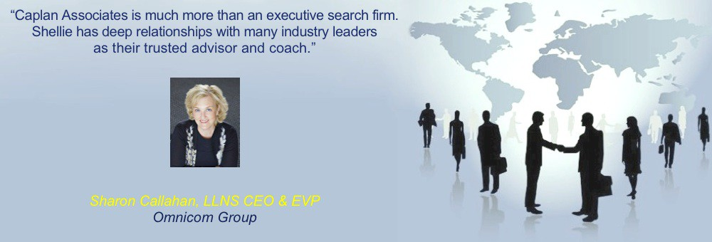 executive search services, executive coaching, career coaching, healthcare executive search, career transition, job sourcing services